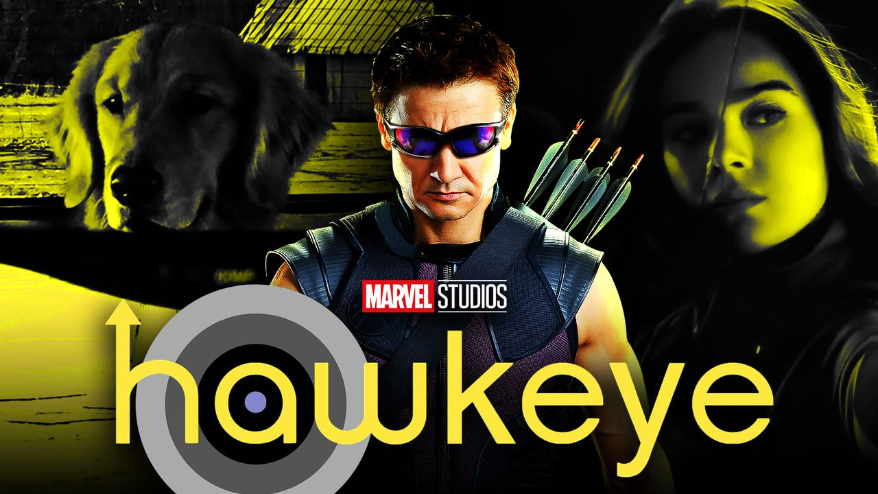 Hawkeye Jeremy Renner Show Lucky the Dog