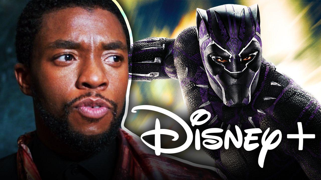 Chadwick Boseman Black Panther Disney+ Logo