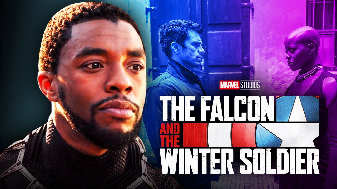Chadwick Boseman Black Panther Falcon and Winter Soldier Logo