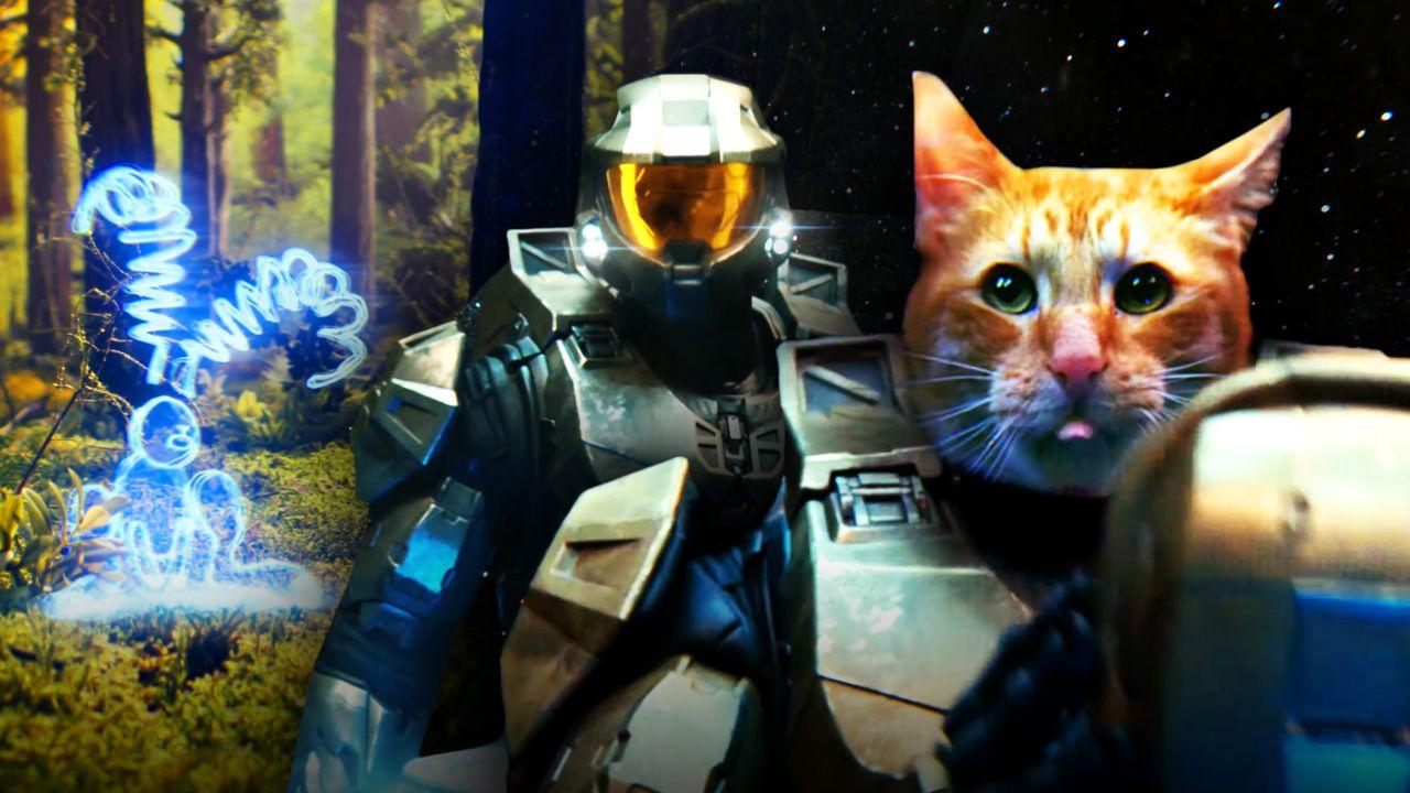Master Chief, Cat