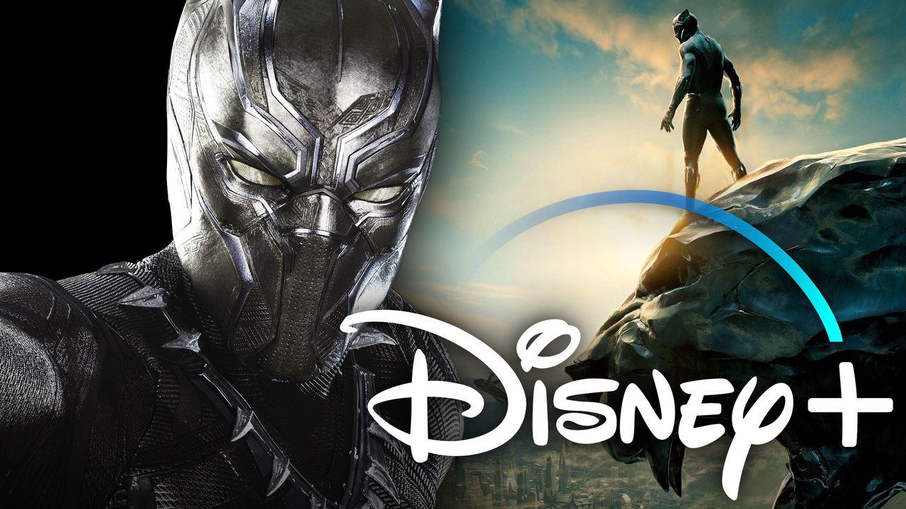 Black Panther Disney Plus