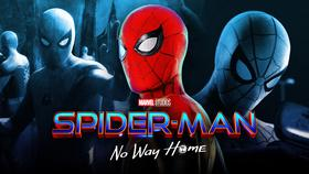 Spider-Man, Spider-Man: No Way Home}