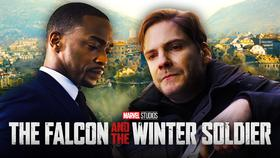 Falcon, Zemo, The Falcon in the Winter Soldier}