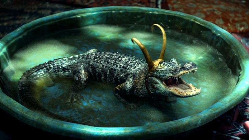 loki-gator