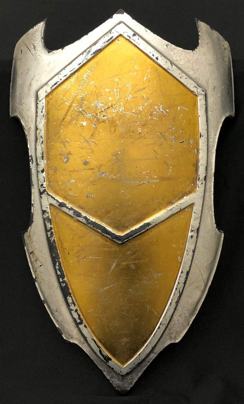 Lady Sif's Shield Movie Prop from Thor